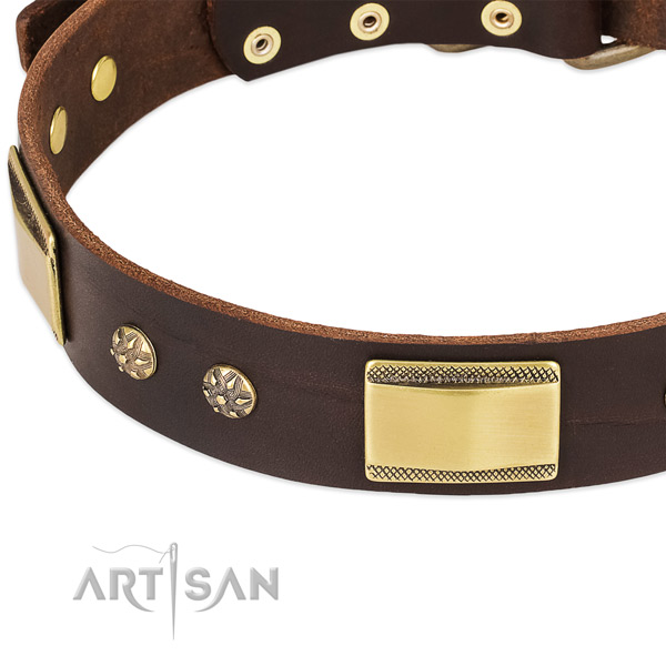 Reliable adornments on full grain natural leather dog collar for your four-legged friend