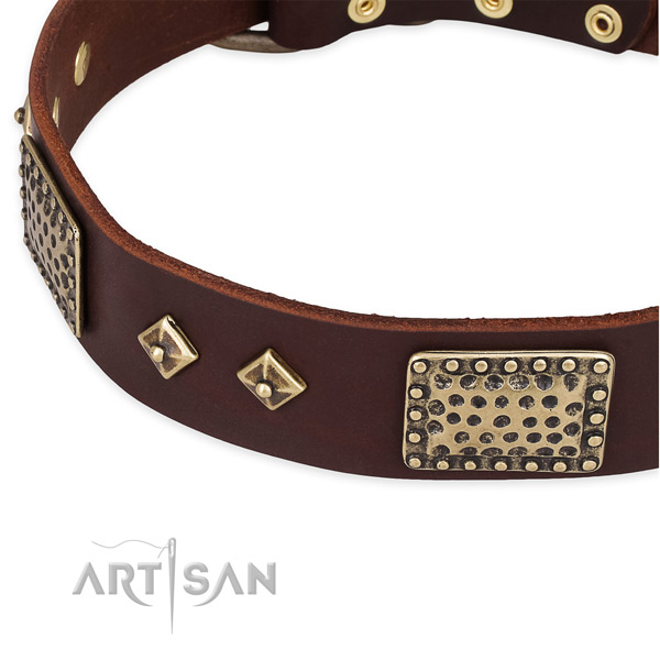 Rust-proof fittings on genuine leather dog collar for your dog