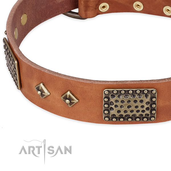 Rust resistant traditional buckle on full grain natural leather dog collar for your doggie