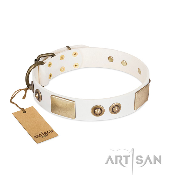 Reliable buckle on full grain natural leather dog collar for your canine