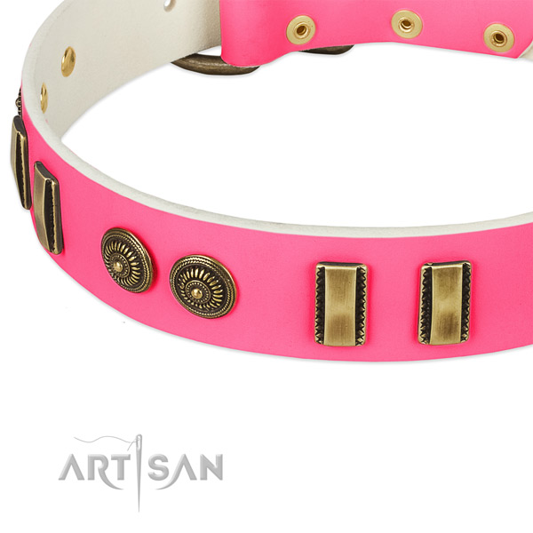 Reliable D-ring on genuine leather dog collar for your doggie