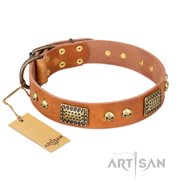 Easy wearing full grain leather dog collar for walking your dog