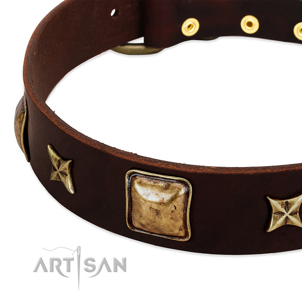 Strong adornments on leather dog collar for your dog