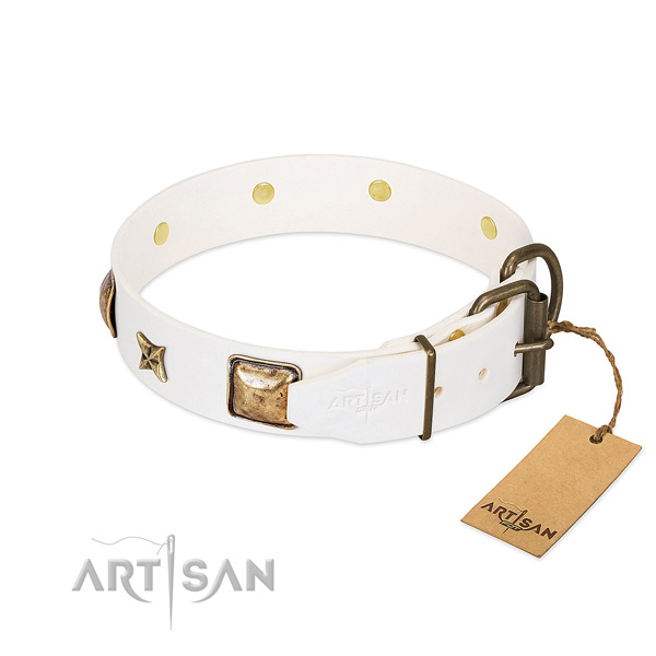 Full grain natural leather dog collar with rust resistant fittings and decorations