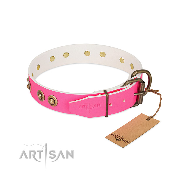 Genuine leather dog collar with reliable hardware and adornments