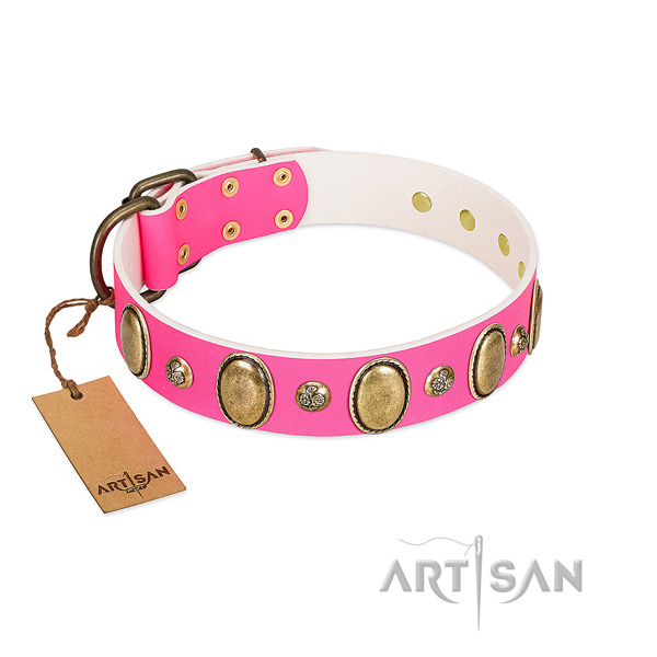 Full grain genuine leather dog collar of reliable material with inimitable studs