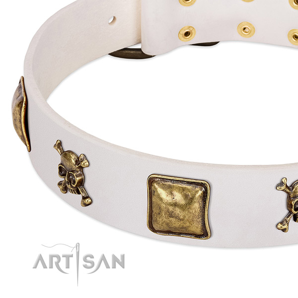 Exquisite leather dog collar with corrosion resistant embellishments