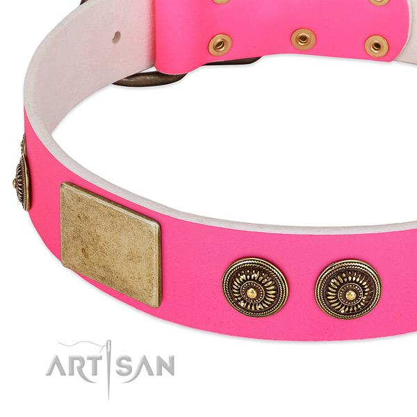 Decorated dog collar created for your attractive doggie