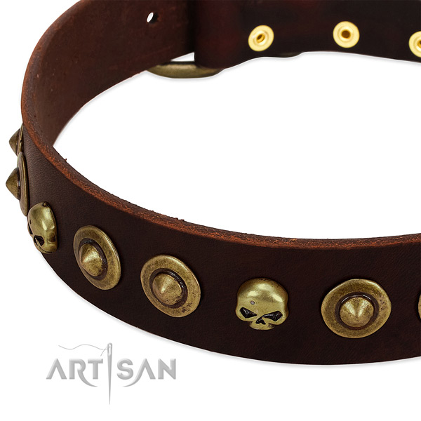 Stylish design decorations on full grain leather collar for your pet
