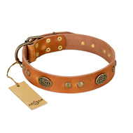 """Sun Beams"" FDT Artisan Tan Leather Mastiff Collar with Decorations"