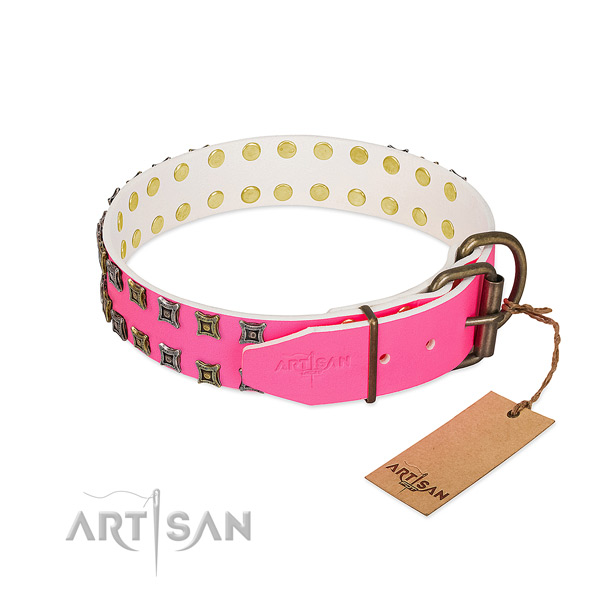 Full grain genuine leather collar with incredible embellishments for your canine