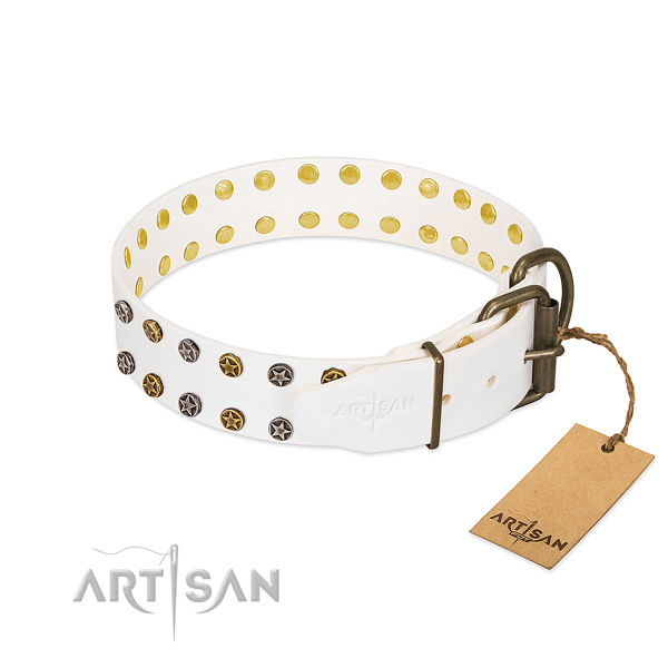 Leather collar with unusual decorations for your pet