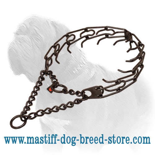Corrosion resistant black stainless steel pinch collar for poorly behaved canines