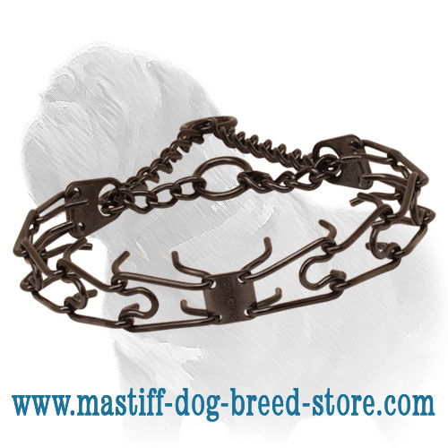 Black stainless steel prong collar for badly behaved pets