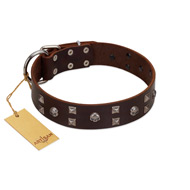 """Brown Shadow"" Designer Handmade FDT Artisan Brown Leather Mastiff Collar"