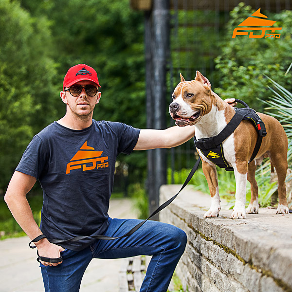 Men T-shirt of Finest Quality Cotton with Pro Logo for Dog Trainers