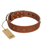 """Daintiness"" Designer Handmade FDT Artisan Tan Leather Mastiff Collar with Silver-Like Adornments"