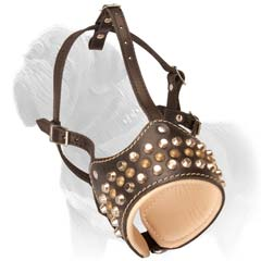 Brass studs decoration looks amazing on this leather muzzle