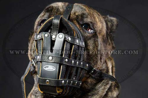 Leather Basket Dog Muzzle for Mastiff Breeds
