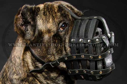 Leather Basket Canine Muzzle for Daily Walking