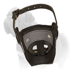 Mastiff Muzzle for Training and Walking