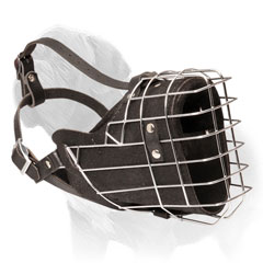 Adjustable Wire Cage and Leather Muzzle for Mastiffs
