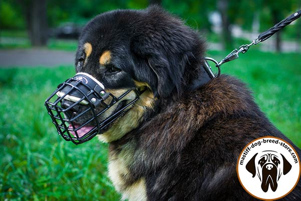 Special-rubber-covered metal cage dog muzzle for Mastiff winter walking