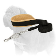 'Leather + Nylon Combo' Mastiff Dog Leash
