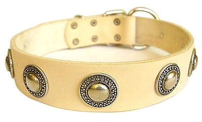 Deluxe Leather Dog Collar with jewelry for Mastiff