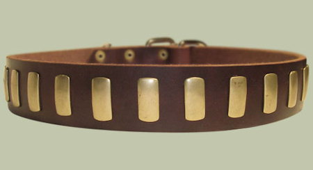 Custom Leather Dog Collar for CANE CORSO - Designer Dog Collar