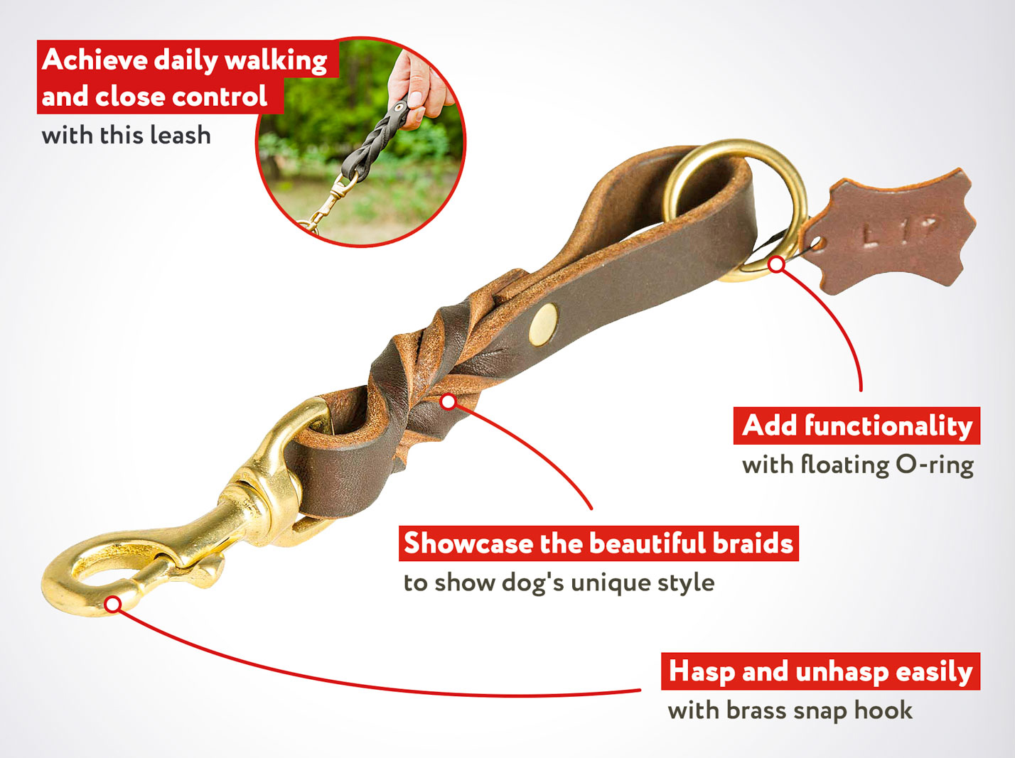 Walker Mastiff Dog Leash With Braided Adornment