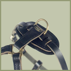 Tac-Black Leather Padded Tracking Harness for Mastiff