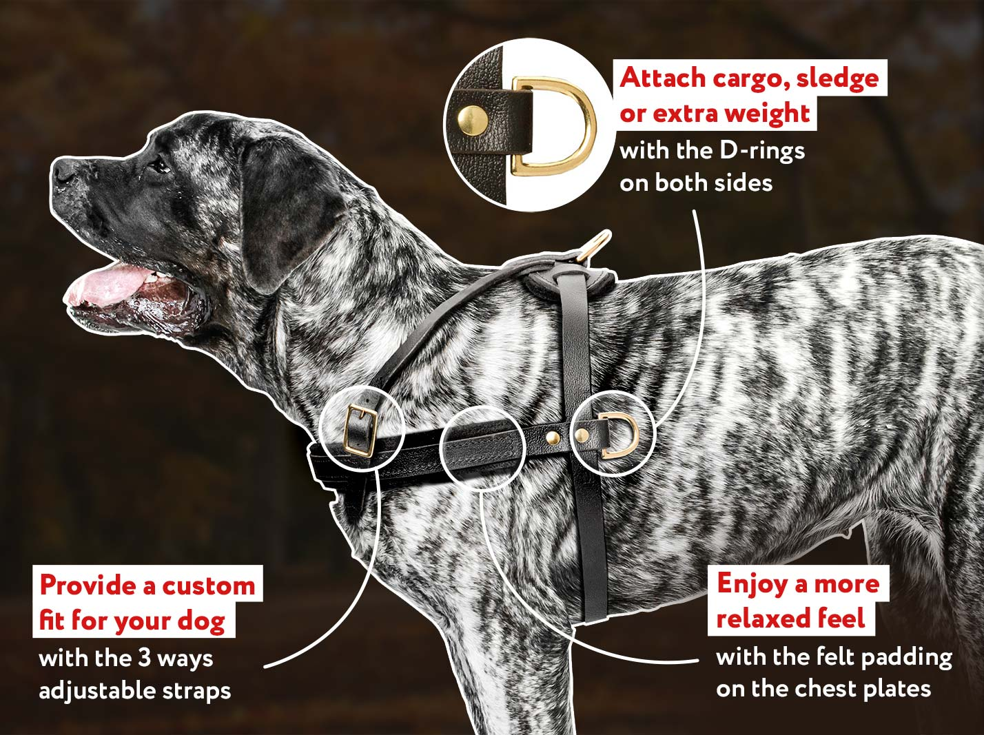 English Mastiff Tracking/PullingLeather Dog Harness